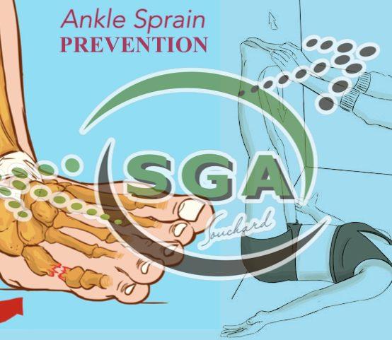 Forta voluntara, proprioceptia, amplitudinea de miscare, postura incorecta pot arata o predispozitie la entorsa la laterala a gleznei?